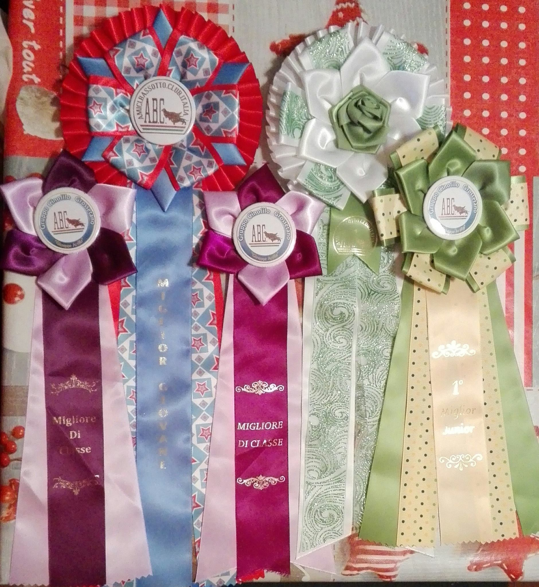 Rosette win at Speciality dachshund club ABC