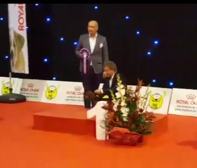 Primo posta miglior bassotto International Dog Show DOUAIPrimo posto BIS International Dog Show DOUAI