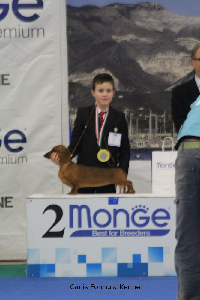 Podio Junior Handler 2 posto