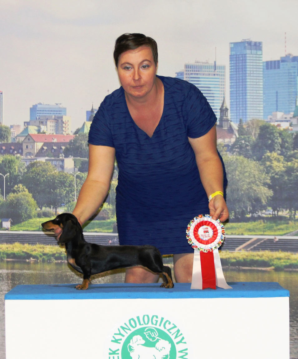 Desideria dell'Antica Torre Hope of Europe - Euro Dog Show 2018