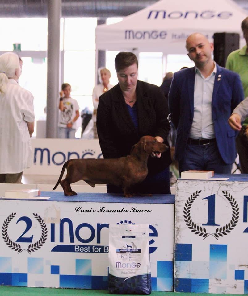 Canis Formula Bacco 2 posto internazionale di Rapallo