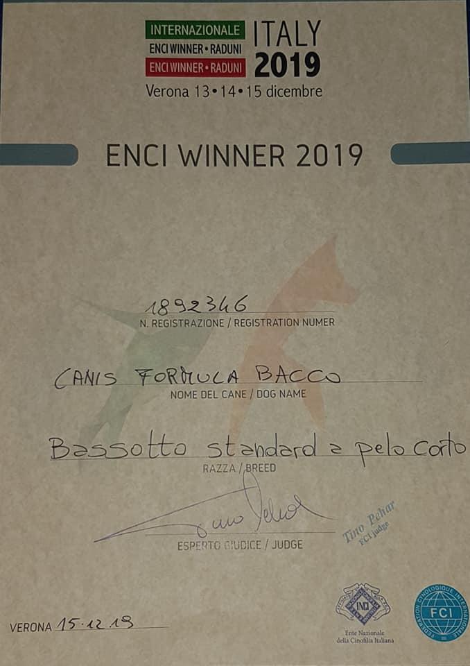 Canis Formula Bacco ENCI WINNER 2019